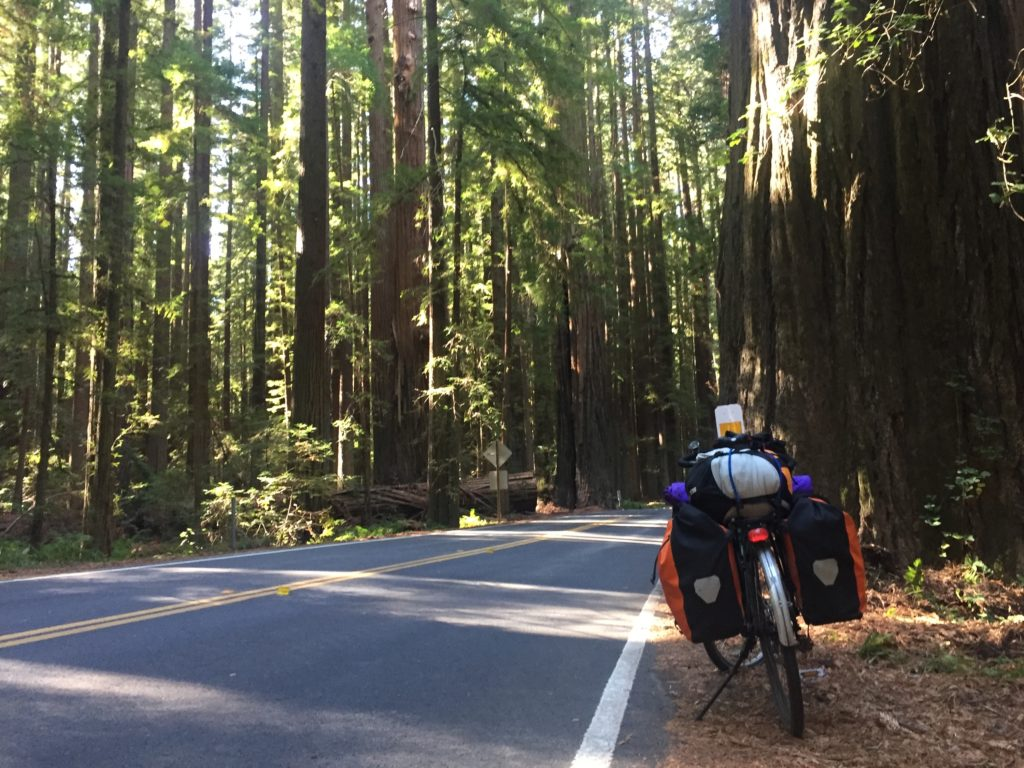 The Pedalshift Project 113: Training for your first bike tour